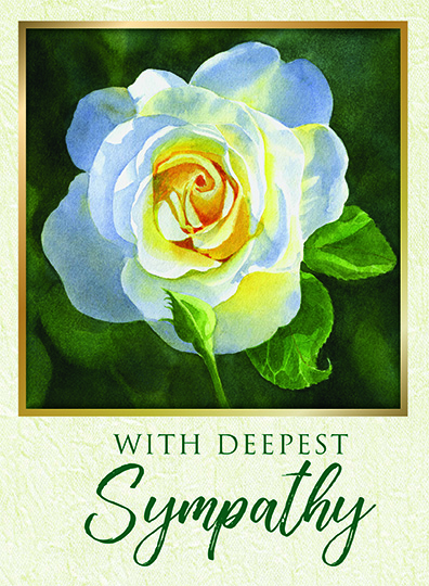 With Deepest Sympathy White Rose