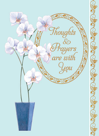 Thoughts and Prayers - Orchids